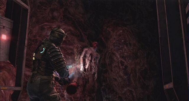 File:Dead-space-creepy-skin-wall-skeleton.jpg