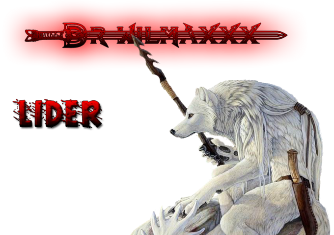 Dr WILMAXxX lider