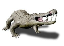 Kaprosuchus NT
