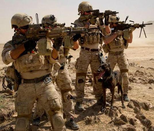 United States Navy SEALs | Deadliest Fiction Wiki | FANDOM