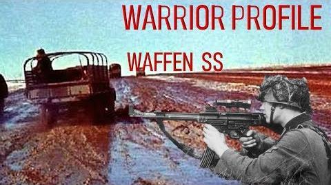 Warrior Profile Waffen SS