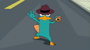 Perry the Platypus Profile