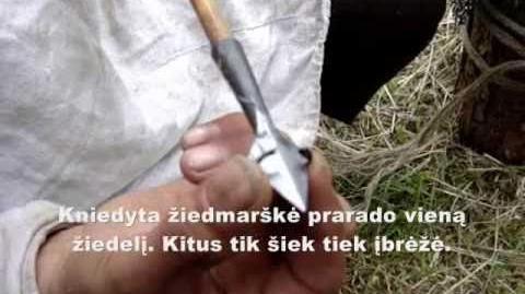 Eksperimentas Nr.2 - kniedyta žiedmarškė ant kimštinio pošarvio