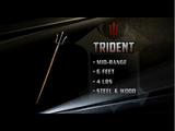 Trident & Net