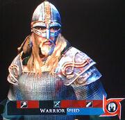 DW VikingArmor01