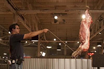 Pig Carcasses