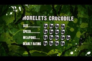 Morelets Crocodile