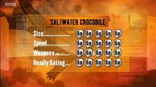 S1 DR saltwater croc