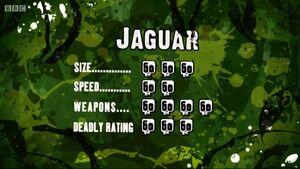 S3 DR jaguar