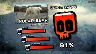 PTP DR polar bear