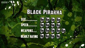 S3 DR black piranha