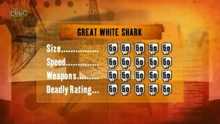 S1 DR great white