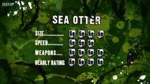 S3 DR sea otter