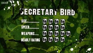 S3 DR secretary bird