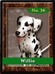 Willie36