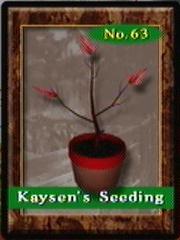 Seedling63