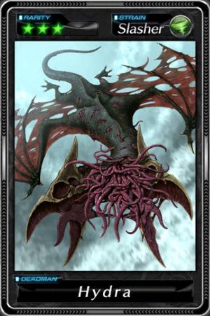 -000025--Hydra-