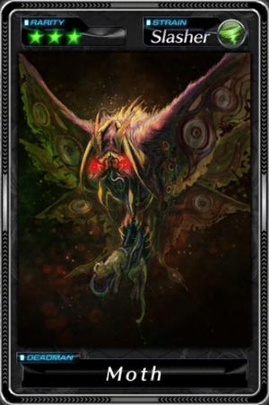 -001025--Moth-