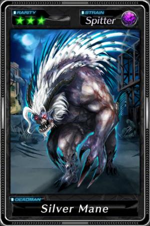 -001022--Silver Mane-