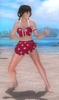 DOA5LR Valentine Days Costume Leifang