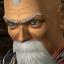 """DOA4- Unlocked """"Gen Fu"""""""