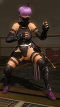 Ninja Clain 2015 Costume Ayane