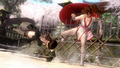 DOA5 Kasumi vs Lei Fang