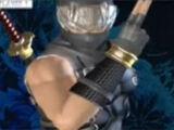 Ryu Hayabusa/Dead or Alive 4 costumes