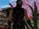 Ryu Hayabusa/Dead or Alive Dimensions costumes