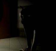 DOA3 Panther