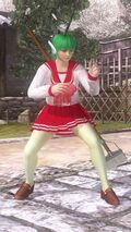 Ayane costume 61