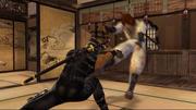 Ryu vs. Hayate