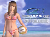 Dead or Alive Xtreme Beach Volleyball 2003 Calendar