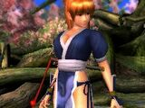 Kasumi/Dead or Alive Dimensions costumes