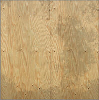 Dead rising plywood texmod