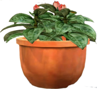Dead rising Potted Plant