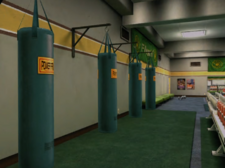 Flexin' Punching Bags