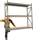 Dead rising steel shelving alternate