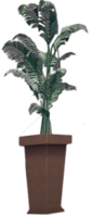 Dead rising Large Fern Tree 2