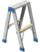Step Ladder (Dead Rising)