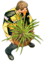 Dead rising round potted plant holding