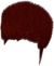 Dead rising Red Hair Dye