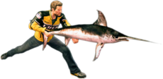 Dead rising swordfish main