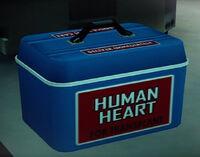 Dead rising Human Heart