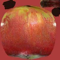 AppleDR2