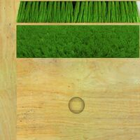 Broom Texture