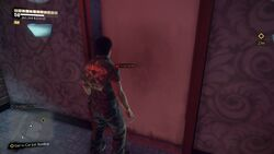 The Diamond Panty Locked Door