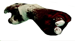 Dead rising Hunk of Meat (Dead Rising 2) A