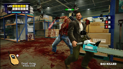 Dead rising hatchetman (11)