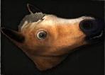 HorseHeadMask